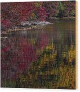 Autumns Color Pallette Wood Print