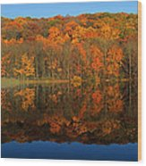 Autumns Colorful Reflection Wood Print