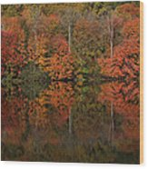 Autumns Design Wood Print by Karol Livote