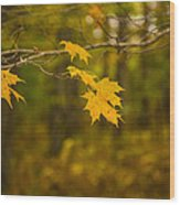 Autumns Fast Approach Wood Print