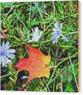 Autumns First Leaf Wood Print