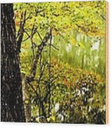 Autumn's First Reflections II Wood Print