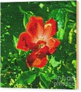 Autumn's  Flower Wood Print