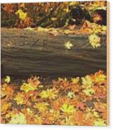 Autumn's Gold Wood Print