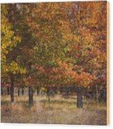 Autumn's Miracle Wood Print