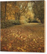 Autumn's Passage Wood Print