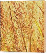 Autumns Passion Wood Print