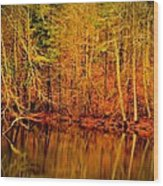 Autumn's Past Wood Print