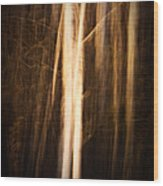 Autumn's Promise 11 Wood Print
