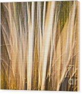 Autumn's Promise 15 Wood Print