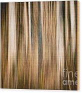 Autumn's Promise 3 Wood Print