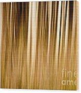 Autumn's Promise 6 Wood Print