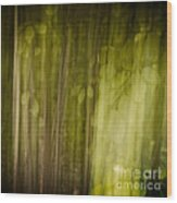 Autumns' Promise 8 Wood Print