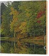 Autumns Reflection Wood Print