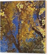 Autumns Reflections Wood Print by Steven Milner
