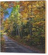 Autumns Road Wood Print
