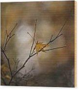 Autumns Solitude Wood Print