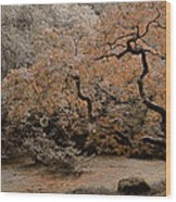 Autumn's Touch Wood Print