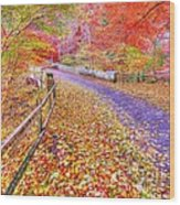 Autumns Way Rouge Wood Print by John Kelly