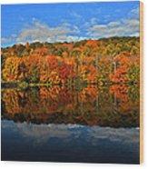 Autumnscape Wood Print