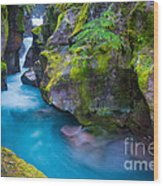 Avalanche Creek Gorge Wood Print