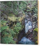 Avalanche Creek In Cedar Forest Wood Print
