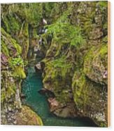 Avalanche Gorge In September Wood Print