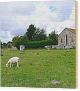 Avebury Stones And Sheep Wood Print