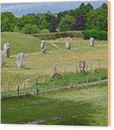 Avebury - Sw Quadrant Wood Print