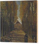 Avenue Of Poplars In Autumn Wood Print