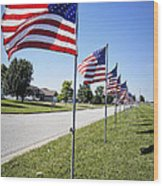 Avenue Of The Flags Wood Print