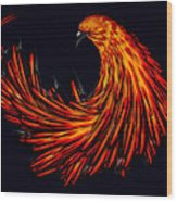 Avian Wood Print
