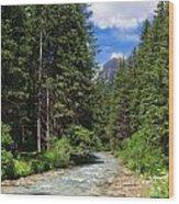 Avisio River Wood Print