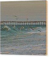 Avon Pier And Birds 7/30 Wood Print