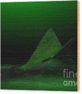 Avro Arrow In Lake Ontario Wood Print by Tom Straub