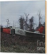 Avro Arrow In The Cove Wood Print