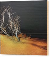 Awaiting The Light I - Outer Banks Wood Print