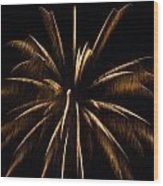 Awesome Orange Fireworks Galveston Wood Print by Jason Brow