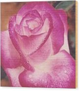 Awesome Rose Pristine Wood Print by Robert Bray