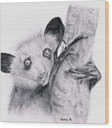 Aye-aye Wood Print by Lucy D