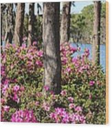 Azalea At The Lake Wood Print