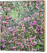 Azalea Heaven Wood Print
