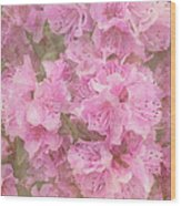 Azalea Textured Wood Print