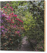 Azalea Trail Wood Print