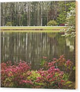 Azaleas And Reflection Pond Wood Print