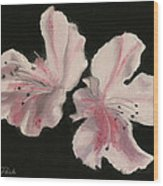 Azaleas Wood Print