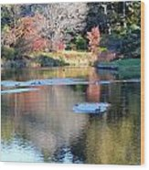 Azelea Asticou Autumn Reflections Wood Print