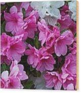 Azalea Glory Wood Print