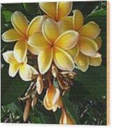 Aztec Gold Plumeria Wood Print