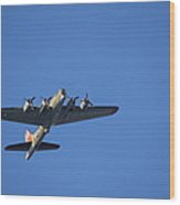 B-17 Over La Jolla Cove Wood Print